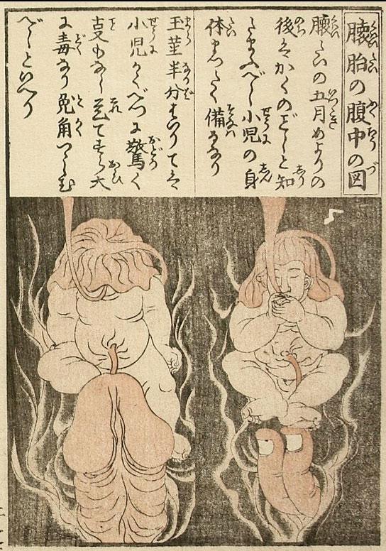 懐胎の腹中の図 | デイリー春画